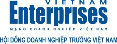 Logo_VNE